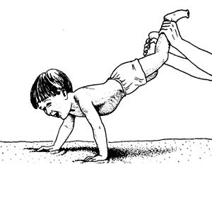 физическое развитие ребенка 2 3 года