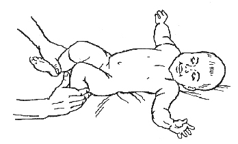 массаж и гимнастика ребенку 9 10 11 12 месяцев